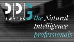 PPG Lawyers - Side Banner - Side